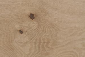 Holzstruktur Sumpfeiche