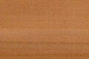 Holzstruktur Elsbeere