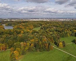 Kölner Stadtwald