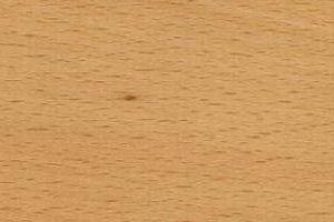 Holzstruktur Buche