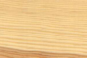 Holzstruktur Kiefer