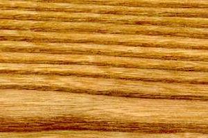 Holzstruktur Ulme