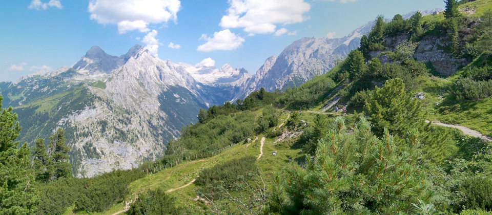 Alpenholz – Zirbenwelt